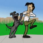 trening psa